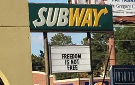 """Schaumburg: Mass Shootings and Gun Laws, """"Freedom is Not Free"""""""
