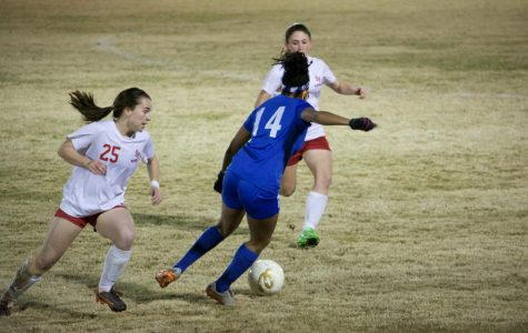 Lady Waves Fight Final Battle in Playoff Loss