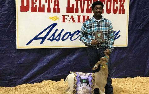 Junior Tyler Branch Wins Livestock Exhibitor Contest