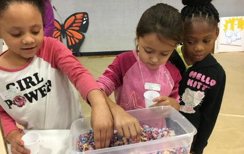 Annual Science Carnival Inspires Young Future Scientists