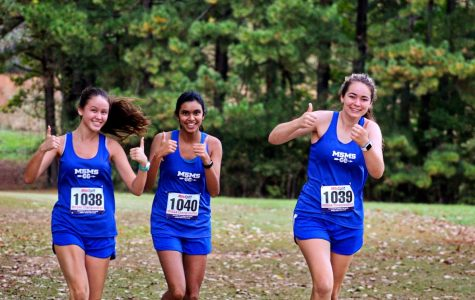 Cross Country Wraps It Up at Clinton State Meet