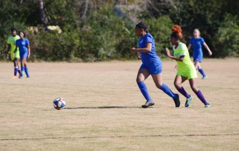 Waves soccer sweeps West Point
