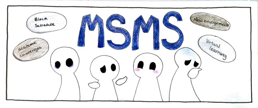 After one month, many juniors have mixed feelings about online school with MSMS.