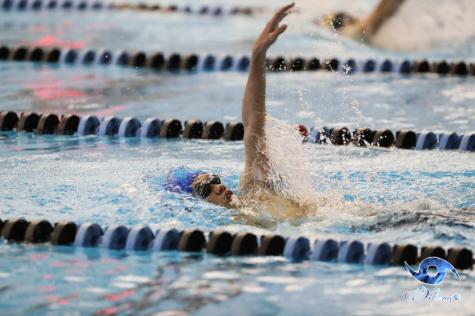 Swim state meet