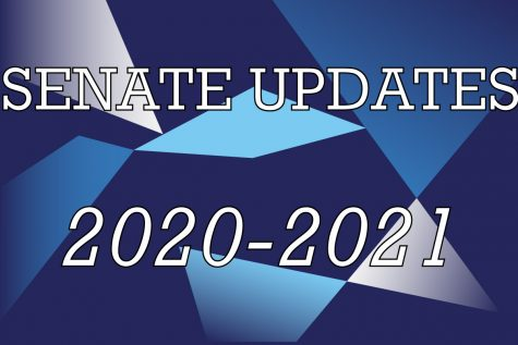 Senate has continued its duties this year, holding virtual meetings over Zoom.