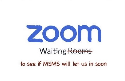 MSMS Admissions has hosted Zoom webinars with senior Emissaries to talk about MSMS.