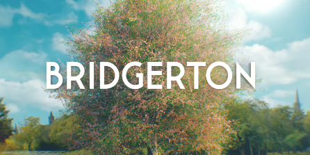 Based on an eight book series, Bridgerton follows the love lives of the Bridgerton children. Season one focuses on the eldest daughter, Daphne.