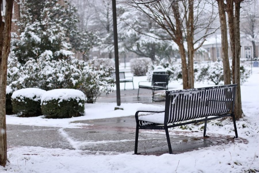 As frosty snow powdered MSMS's campus grounds, students took a break from their studies to enjoy scenic views.