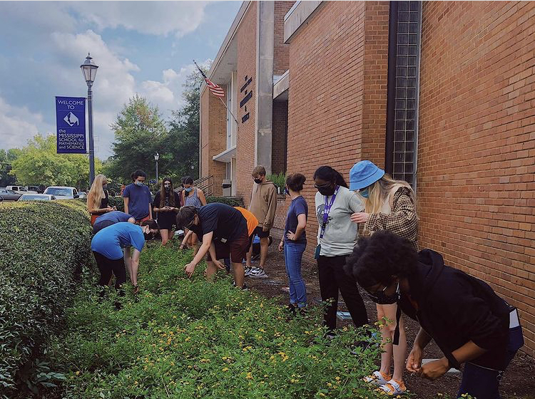 Club activities, like SEAL and Plant Club's garden weeding project, have picked up speed across campus.